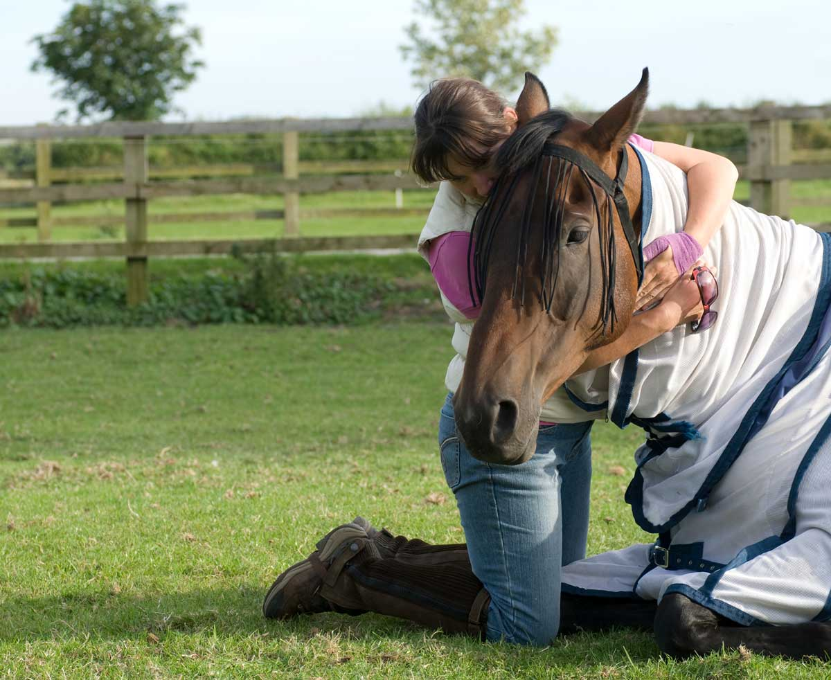Photo of owner hugging a horse representative of treating equine colic.