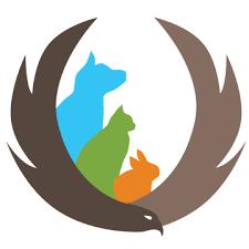 veterinary angles logo