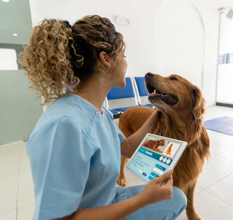 Photo of veterinary nurse with dog in exam room