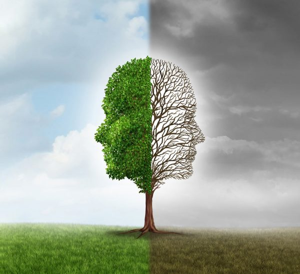 Graphic of tree with one half in summer and one in winter
