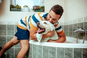 Photo of man drying dog after a bath, representative of home remedies for pet allergies.