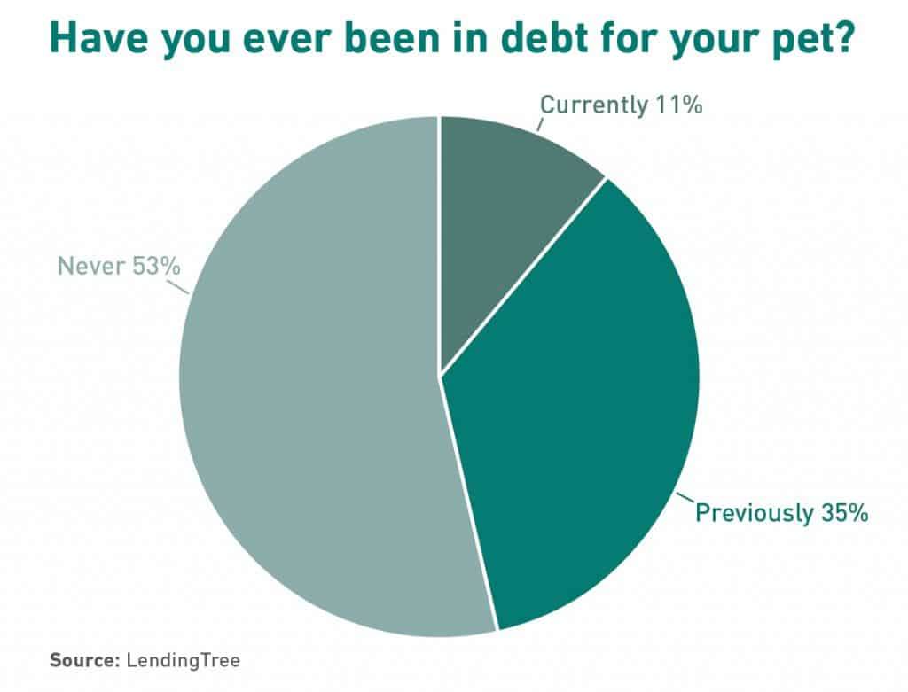 Pie chart of have you been in pet debt.