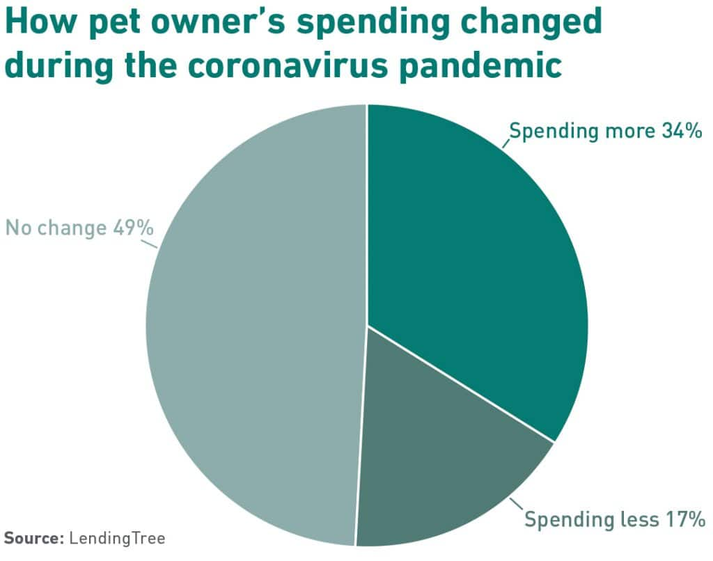 Pie chart of changes in pet spending during pandemic representative of pet debt.