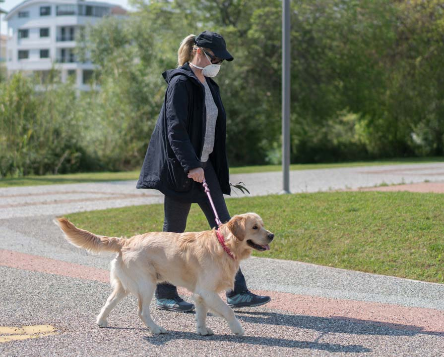 Photo of woman walking a dog representative of pet owner habits.