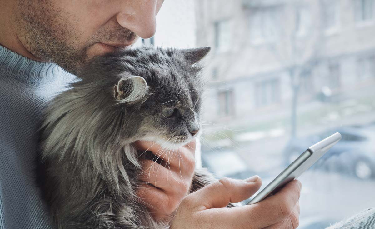 Photo of cat, its owner, and mobile phone representative of digital pet eco-system.