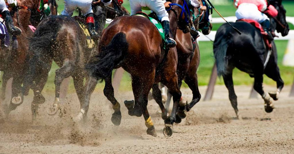Image of horses racing representative of keeping Equine sports clean.